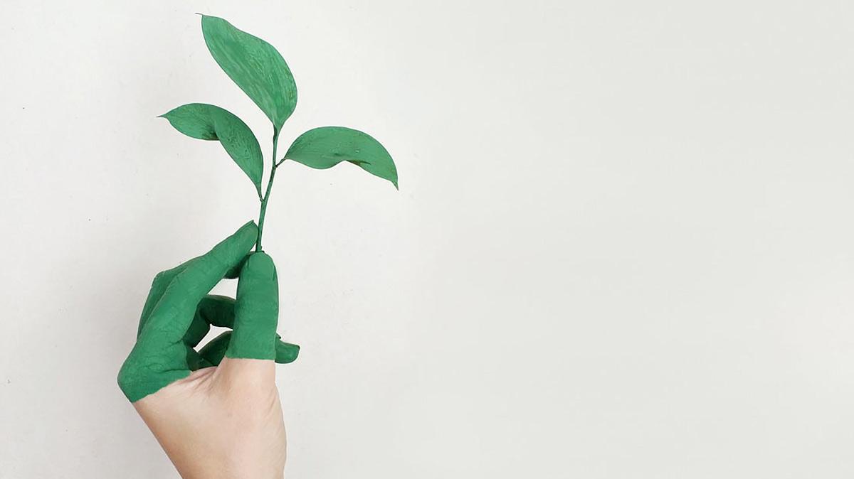 Erste nachhaltige Anleihe der Signa Development Selection